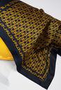 AEROBICH19 : Foulards & Écharpes couleur Marine